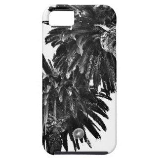 Palmträd iPhone 5 Cover