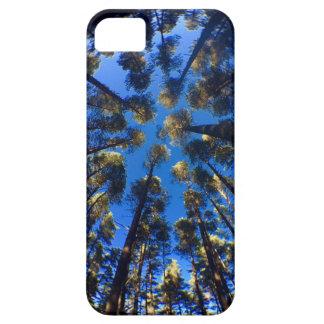 Palmträd iPhone 5 Skydd