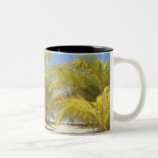 Palmträd på en strand för Honduras vitSand Två-Tonad Mugg