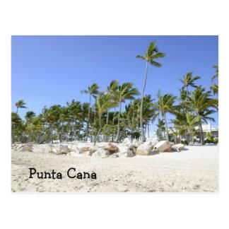 palmträd på en tropisk strand vykort