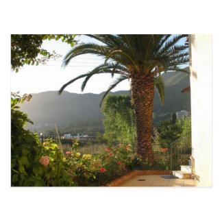Palmträd på solnedgången på den Corfu ön Vykort