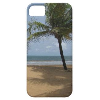 Palmträd på strandfotoet iPhone 5 fodraler