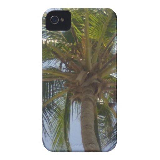 Palmträdblackberry boldfodral iPhone 4 Case-Mate skydd