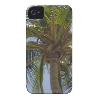 Palmträdblackberry boldfodral Case-Mate iPhone 4 fodral