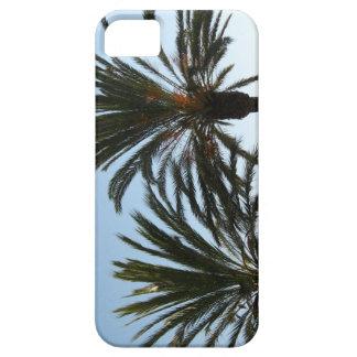 PalmträdfotoiPhone/iPadfodral iPhone 5 Case-Mate Fodral