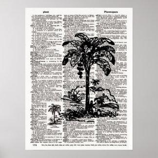 Palmträdordbokkonst Poster