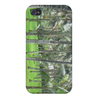 Palmträdskogiphone case iPhone 4 skydd