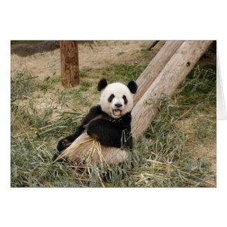panda107 hälsningskort