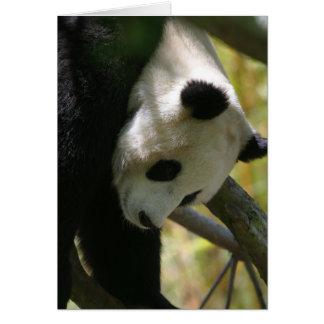 Panda #1 hälsningskort