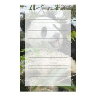 Panda som äter bambu på snö, Wolong, Sichuan, Brevpapper