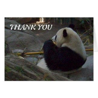 Pandabjörn som äter bambutackkortet hälsningskort