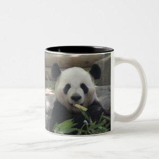 Pandabjörnmugg Två-Tonad Mugg