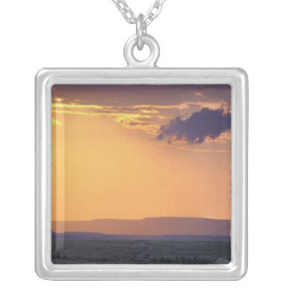 Panorama- beskåda av singelacaciaträd på silverpläterat halsband