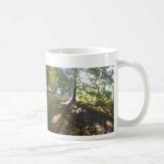 Panorama- solig mugg för höstNaarden kaffe