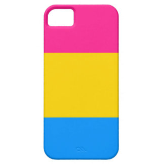 Pansexual flagga iPhone 5 Case-Mate skydd