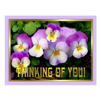 Pansy~ som är tänkande av dig ~-vykort vykort