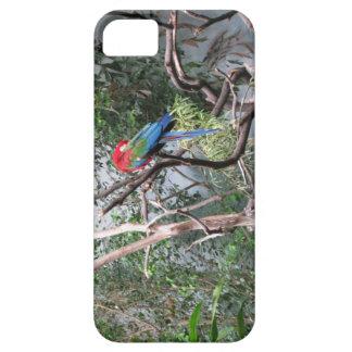 Papegoja iPhone 5 Case-Mate Fodral