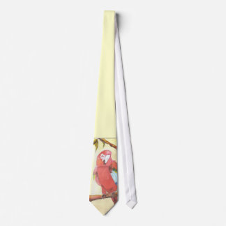 papegoja slips