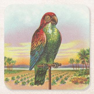 Papegoja Underlägg Papper Kvadrat