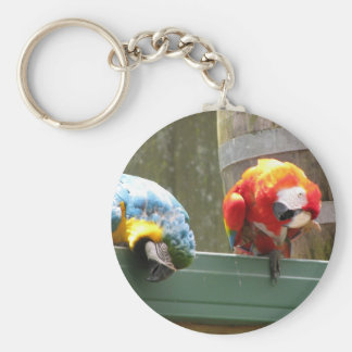 Papegojor Rund Nyckelring