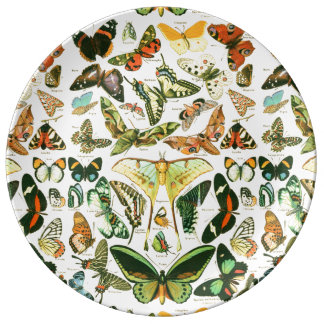 Papillons Porslinstallrik