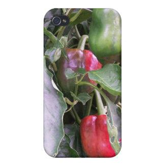 Paprikor iPhone 4 Fodraler