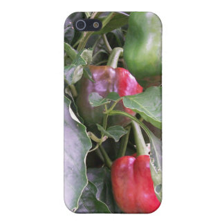 Paprikor iPhone 5 Skydd