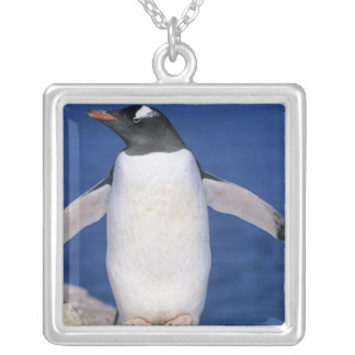 Papua för Gentoo pingvinPygoscelis) port Silverpläterat Halsband