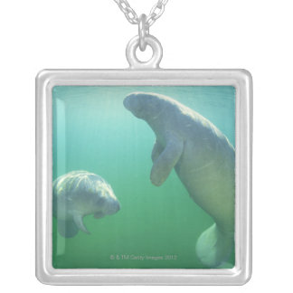 Para av att simma för florida manatees halsband med fyrkantigt hängsmycke