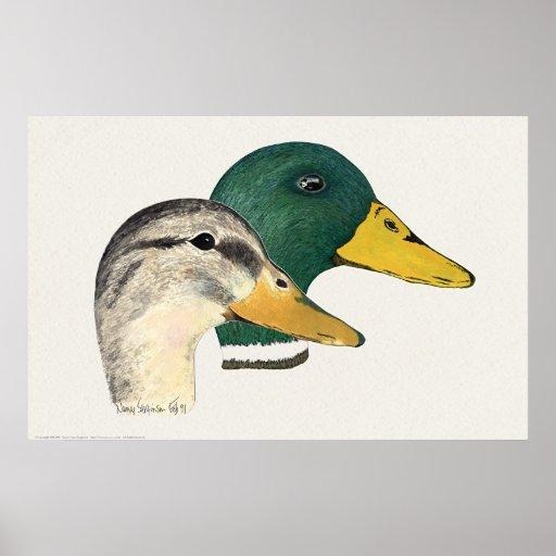 Para av gräsand duckar (draken och hönan) print