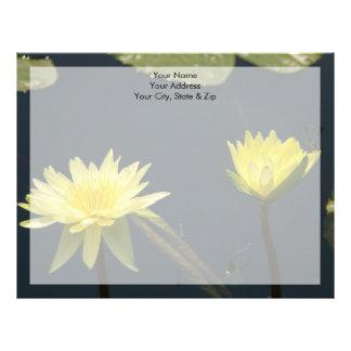 Para av gula lotusblommanäckrosblommor brevhuvud