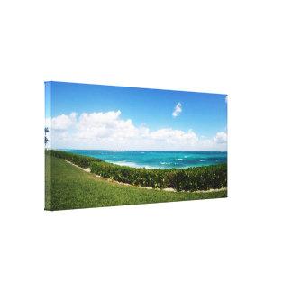 Paradisöstrand panorama-   beskådar canvastryck