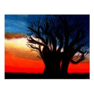 Pari Chumroo Baobob trädvykort Vykort