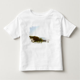 Park tar av planet att förbise Atlantic Ocean Tee Shirts