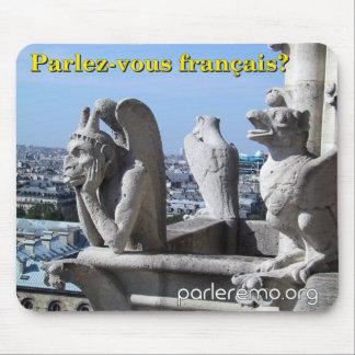Parlez-vous français?  Notre Dame frankrike Musmattor