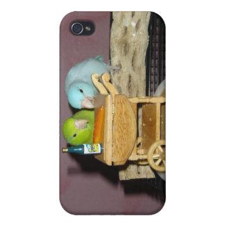 Parrotlets Tea för två iPhone 4 Skydd