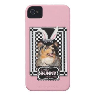 Påsk - någon kanin älskar dig australian shepherd Case-Mate iPhone 4 skal