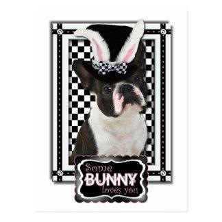 Påsk - någon kanin älskar dig - Boston Terrier Vykort