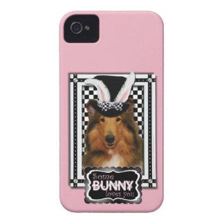 Påsk - någon kanin älskar dig - Collie Natalie iPhone 4 Hud