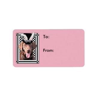 Påsk - någon kanin älskar dig - Labrador choklad Adressetikett