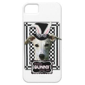 Påsk - någon kanin älskar dig - Whippet iPhone 5 Case-Mate Cases