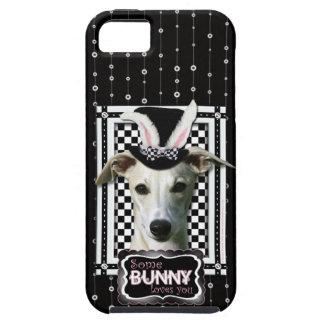 Påsk - någon kanin älskar dig - Whippet iPhone 5 Cases