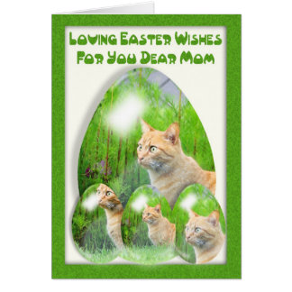 Påskäggkort, med katter, mamma, påsk för mamma hälsningskort