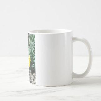 Påskliljakaffemuggen Vit Mugg
