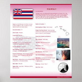 Påstå av Hawaii, HI affischer