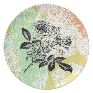 Pastell målar splatterro som trycket pläterar matr tallrik