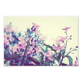 Pastellfärgade blommigtgrenar fototryck