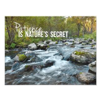 Patiens är det hemliga fototrycket för naturer