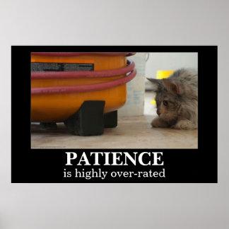 Patienskatt- och musDemotivational affisch