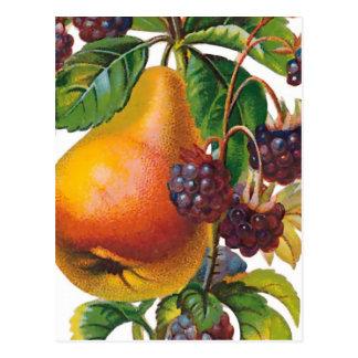Pear och björnbär vykort
